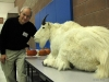 Jurgen Hess and Mountain Goat