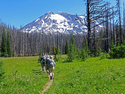 2. Entering a meadow at 5350 ft.elev. low-res