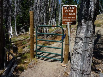 The gate, with a good latch on it that closes tight with a decent swing