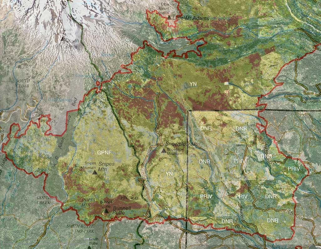 Mt Adams Washington Map.Cougar Creek Fire Burn Severity Maps Friends Of Mount Adams